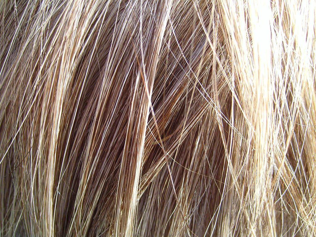 1024px-Blonde_hair_detailed